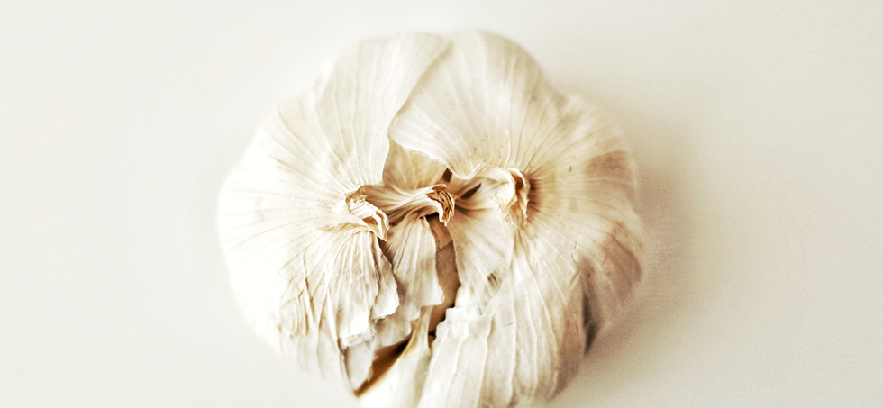 Beauty of Garlic