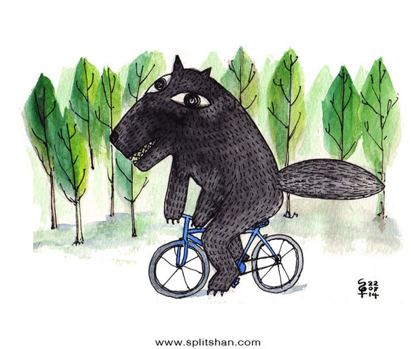 Big Grey Wolf