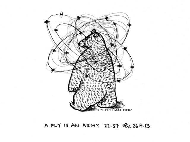 A fly is an army.