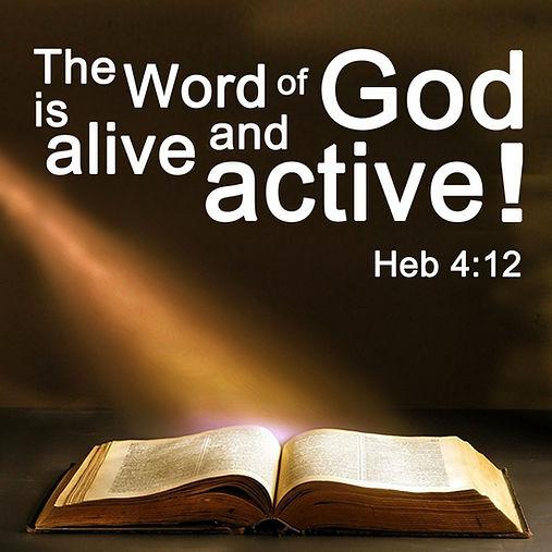 bible wisdom.jpeg