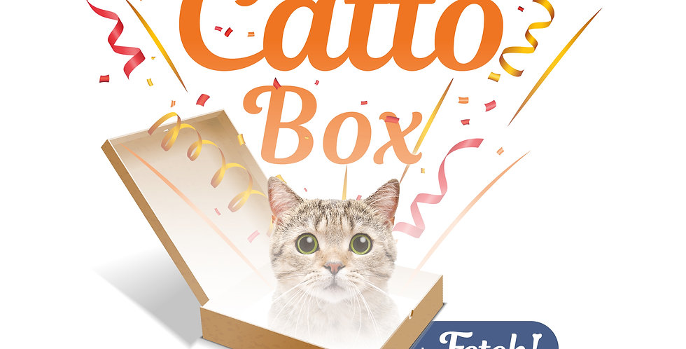 Fetch - Catto Surprise Box