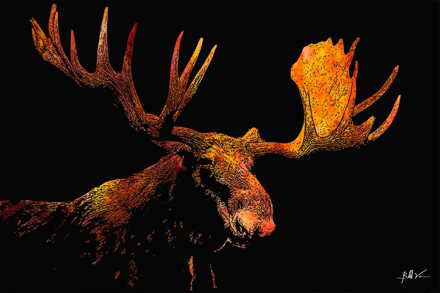 Moose 4 x 6.jpg