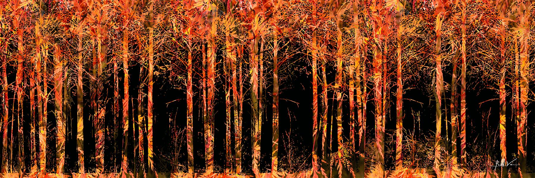Forest Fire 4 x 12.jpg