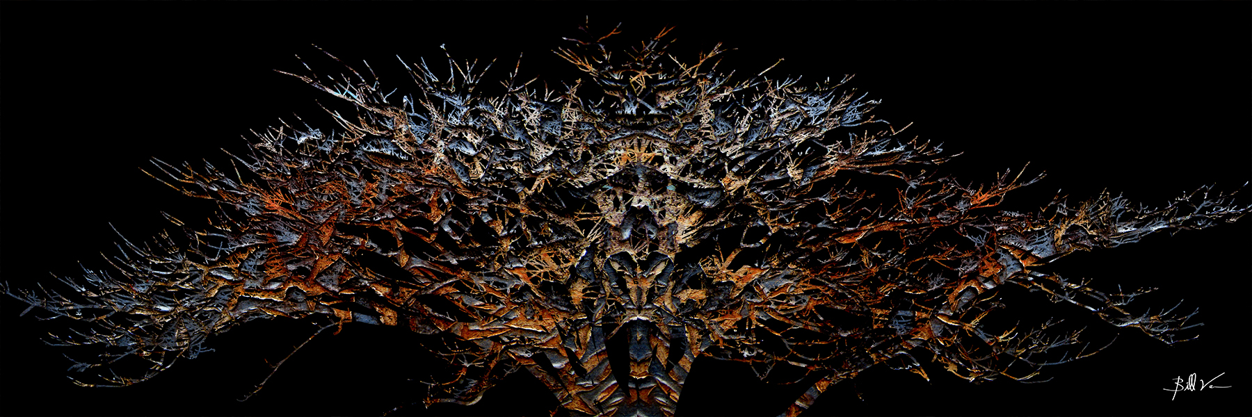 Wide Tree 16 x 48