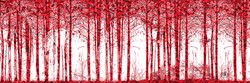 Red Forest 4 x 6.jpg