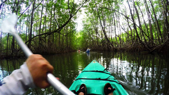 Come Experience Kayaking