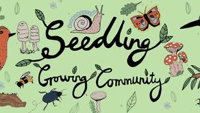 Seedling: Growing Community 🌱