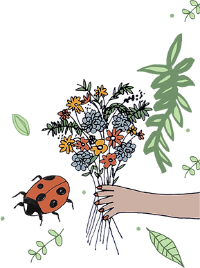 bouquetladybird.png