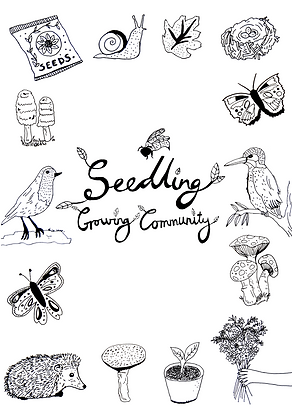 Seedling Colouring Sheet.png