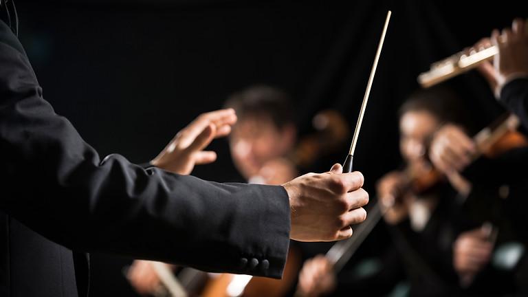 Kammerorchester light!