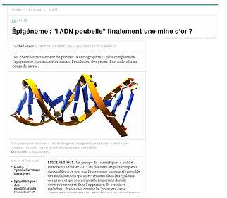 epigentique genes actives.jpg