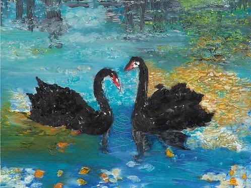 Les deux cygnes noirs
