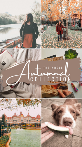 Autumnal Collection Presets