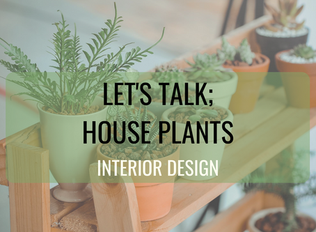 let's talk; house plants