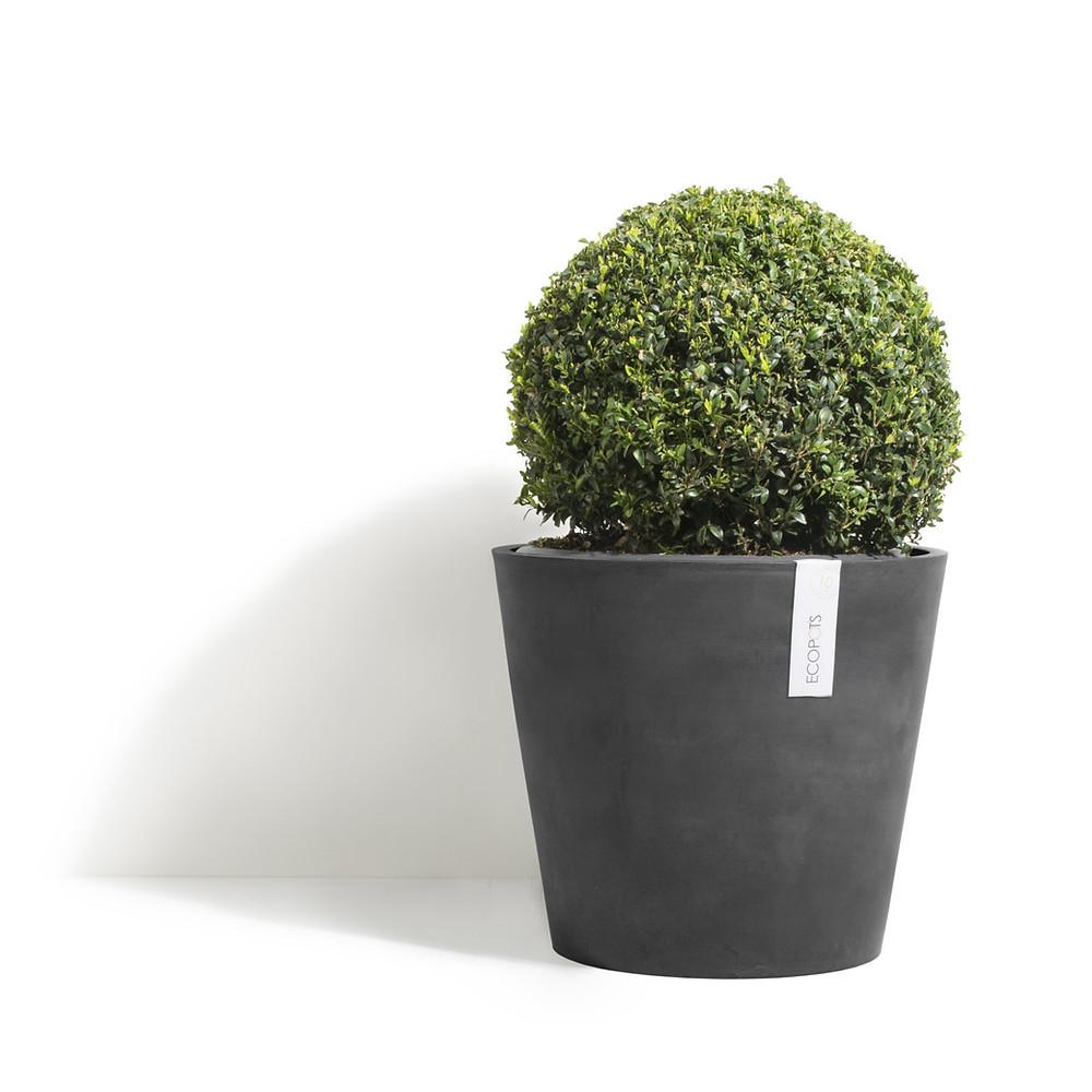 AShortWalk recycled ecopots Zero Waste Eco Friendly Sustainable