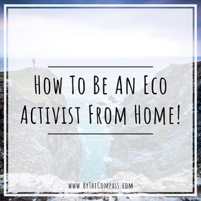 How To Be An Environmental Activist From Home! Quick & Easy Eco Tips!