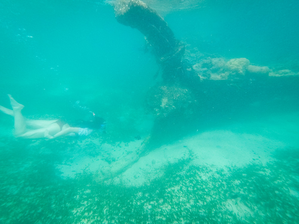 TAO, Snorkelling Shipwreck, Near El Nido, Palawan, Philippines