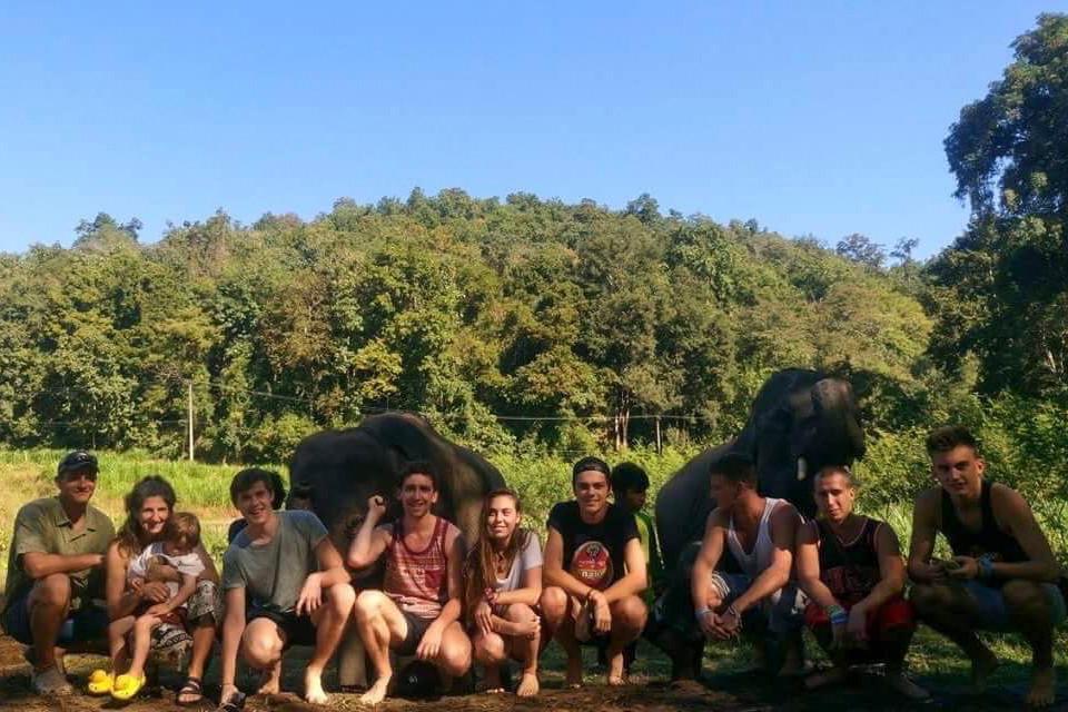 elephant sanctuary group photo with posing elephants, chiang mai, thailand