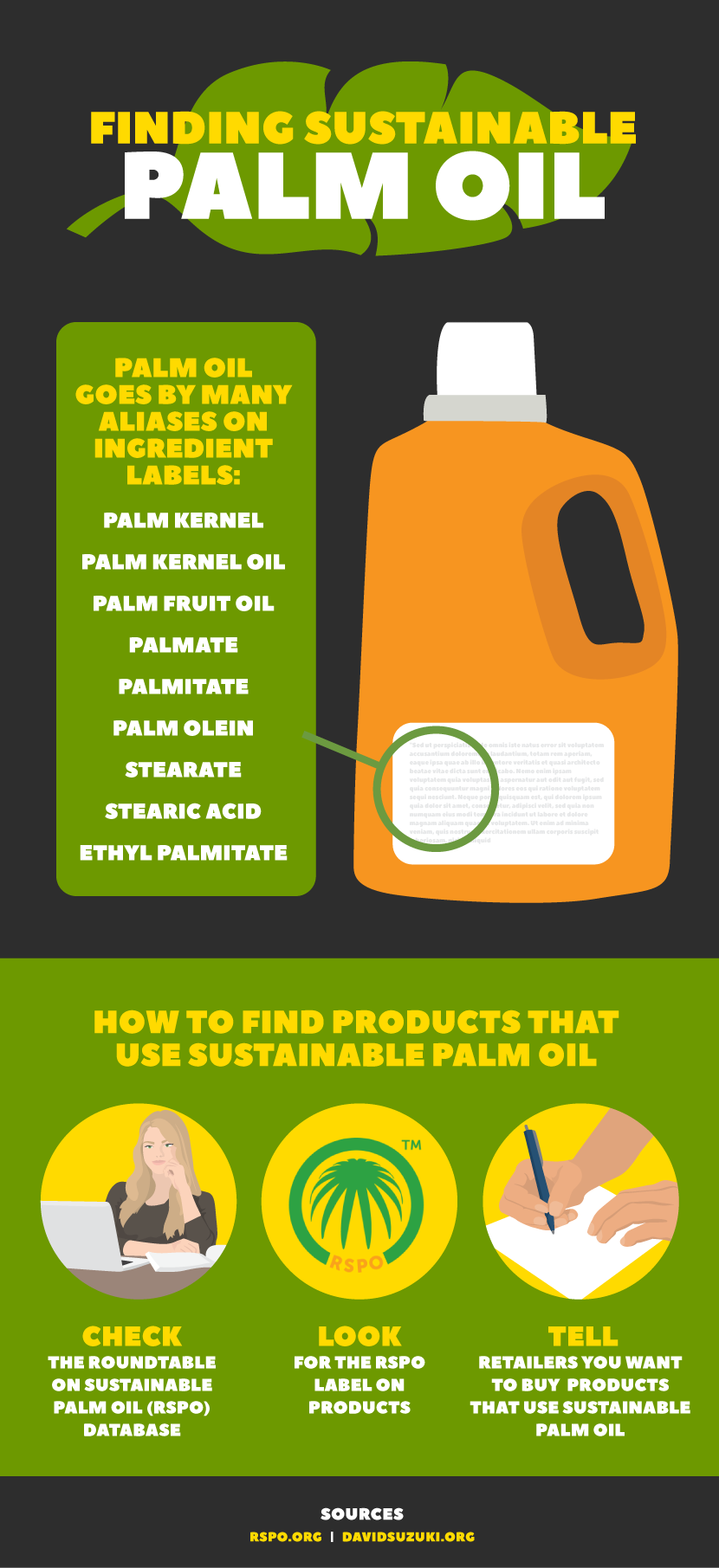 Finding Sustainable Palm Oil, Fix.com