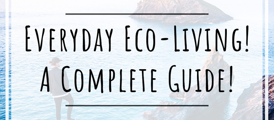 A COMPLETE GUIDE For Everyday Eco Friendly Living! Tips & Tricks For A More Sustainable Lifestyle!