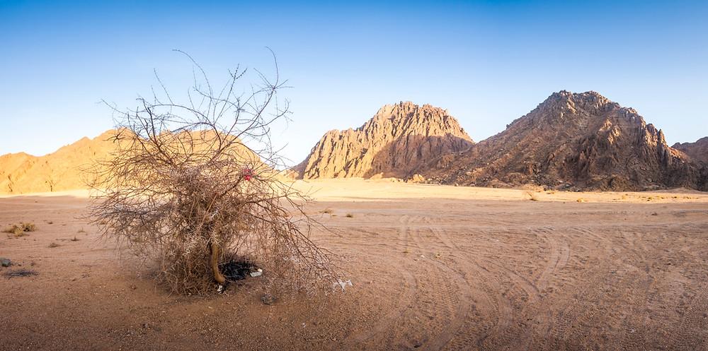Echo Valley, Sinai Desert, Egypt