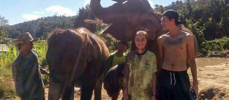Our Experience With Elephant Tourism In Thailand & An Unethical Elephant Sanctuary Visit (we think)!