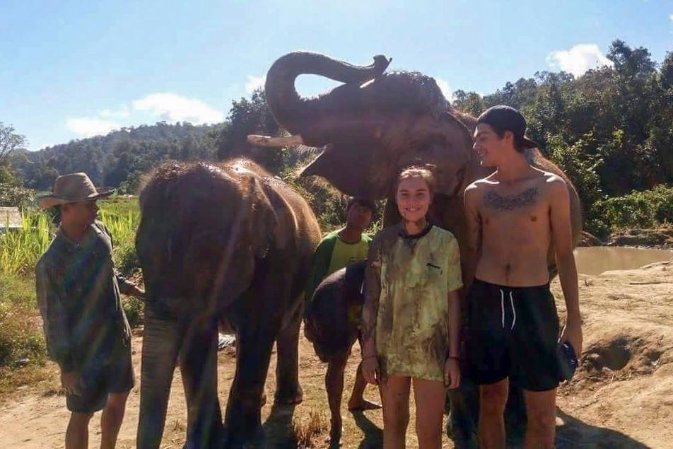 elephant sanctuary photo with posing elephant, chiang mai, thailand