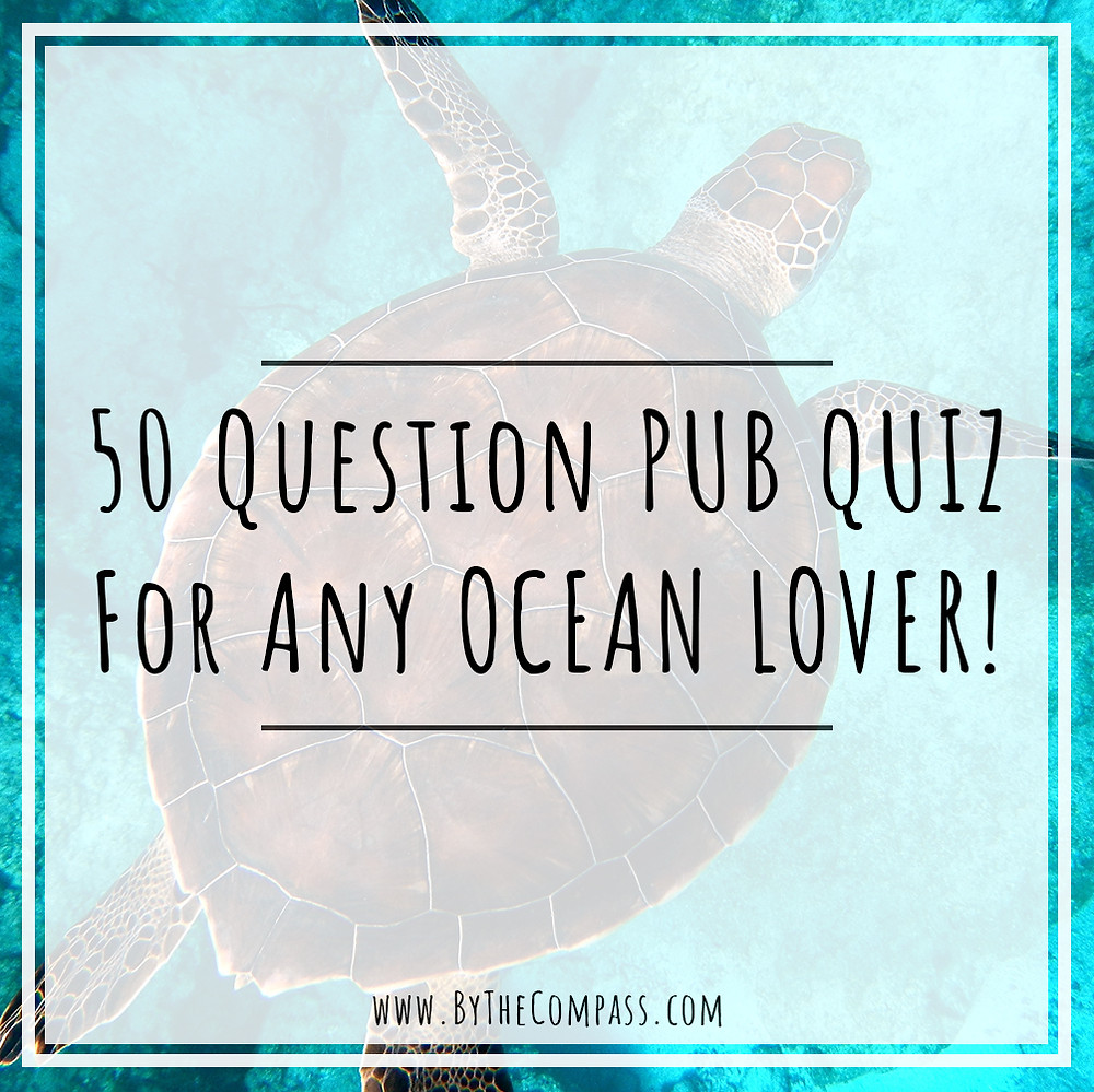 50 pub quiz about the ocean for ocean lovers! trivia facts and movie round!