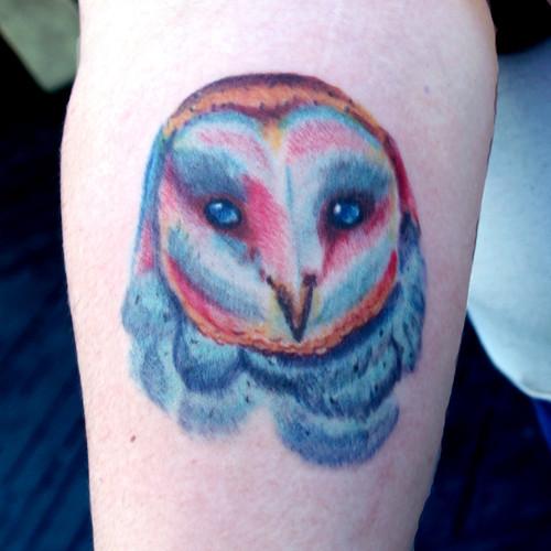 color owl.jpg