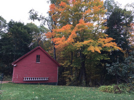 Carriage House in the Fall