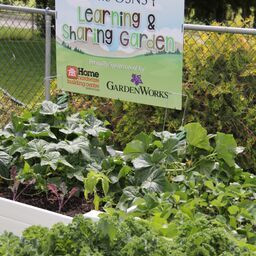 OSNS Learning & Sharing Garden Is Alive and Growing, Thanks to Community Sponsors GardenWorks an