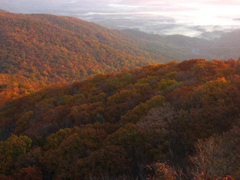Blue Ridge Mountains Fall Foliage