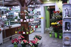 a la fleuristerie arpajon magasin 2