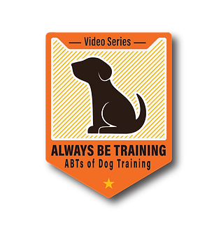 AlwaysBeTraining_Branding_Color-300res.p