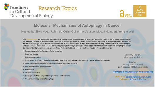 Molecular Mechanisms of Autophagy in Can