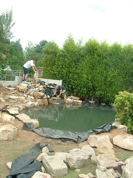 large fish pond, koi pond , waterfeatures, waterfalls, landscaped gardens, landscape construction cheshire,rocks,watr