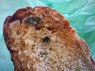Moldy bread & what you should do about it