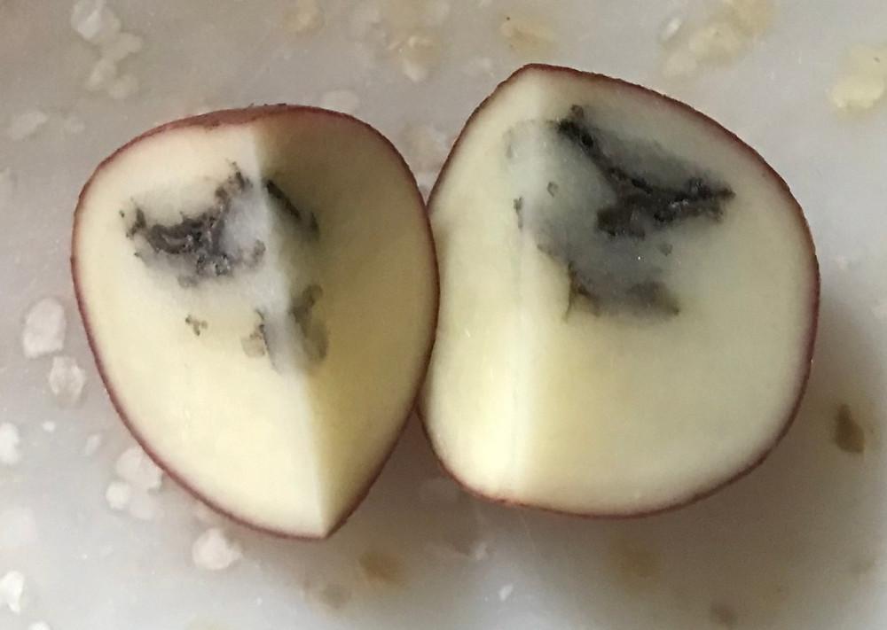 Black smokey areas inside a potato