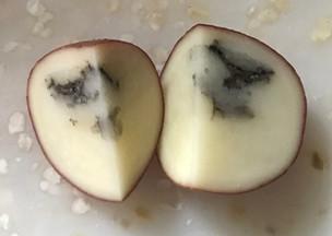 Black pattern inside a raw potato?