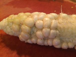 Shriveled corn kernels?