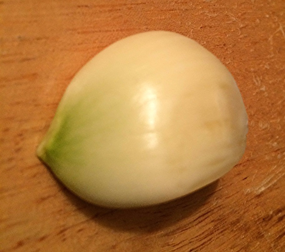 Chlorophyll developed in this garlic clove, turning part of it green