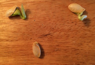 Sprouted squash seeds?