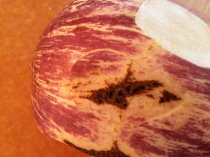 """This eggplant looks """"scarry,"""" but it can still make a good meal"""