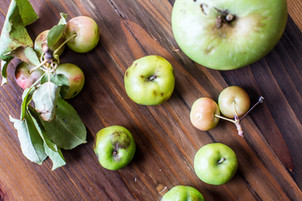 Turning backyard crabapples & foraged fruit into cider: Q&A with ANXO Cidery
