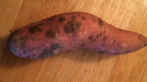 Sweet potatoes looking spotty?