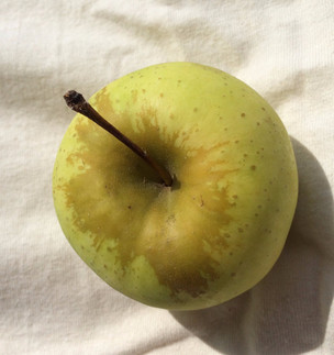 Should I cut off the brown streaks on my apple?