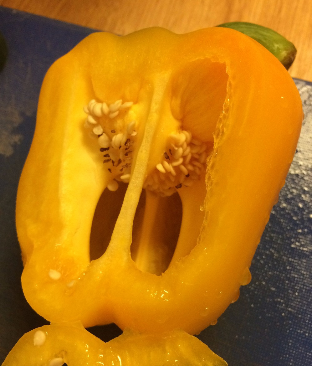 This pepper has some dark and shriveled seeds, but it's perfectly fine to eat.