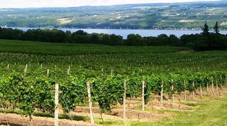Cheers for Finger Lakes in New York by Laing Self Storage of Binghamton