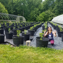 Denise with some of our Hemp Plants
