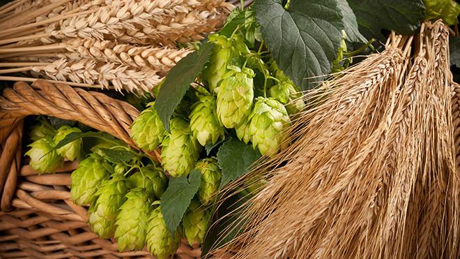 Craft-Beer-UW-Tacoma.jpg